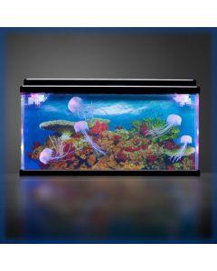 Aquarium - koraal rif met kwallen